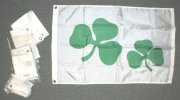 Nylon Shamrocks flags